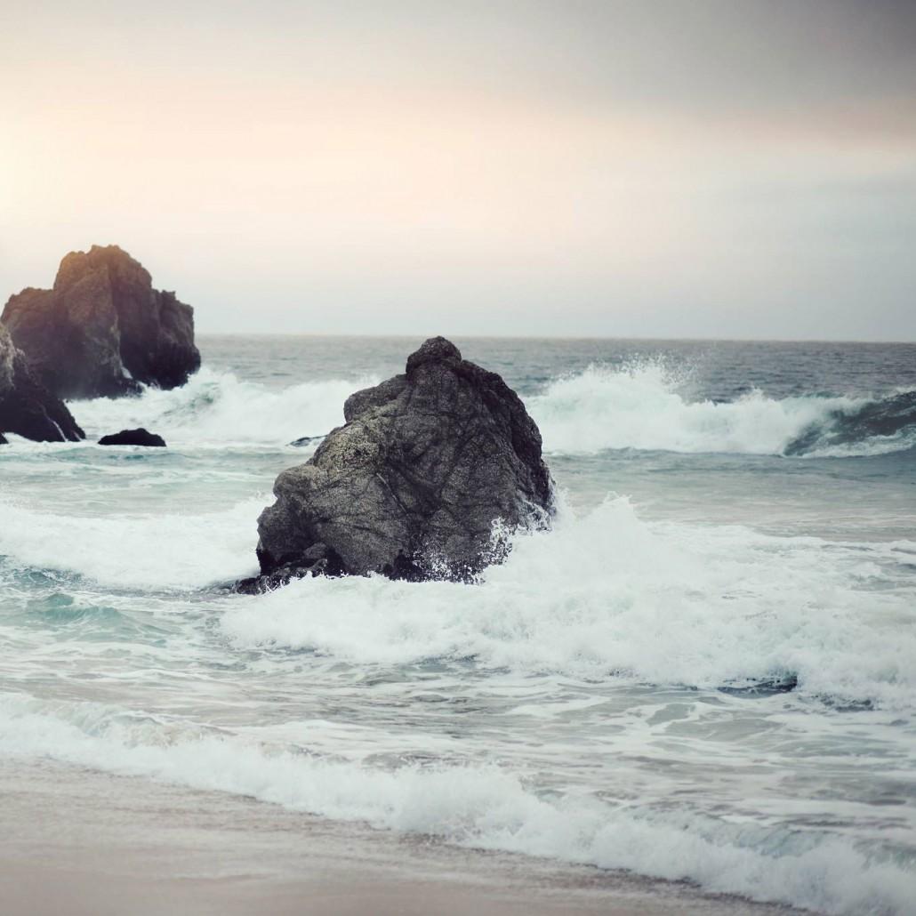 Beach Scene, Organic Flowmotion